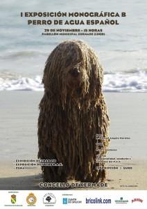 perro_de_agua